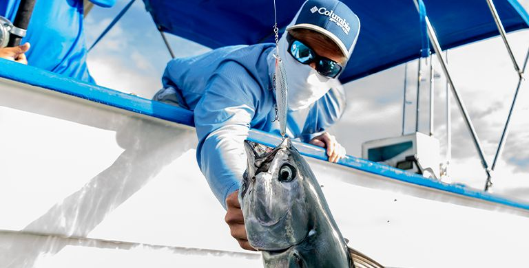 If you're into sportfishing, southern Baja is the place to be. The region's incredible biodiversity creates conditions that are epic for sportfishing.