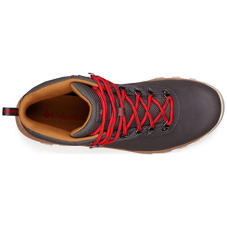 7395df2c709 Men's Newton Ridge™ Plus II Waterproof Hiking Boot