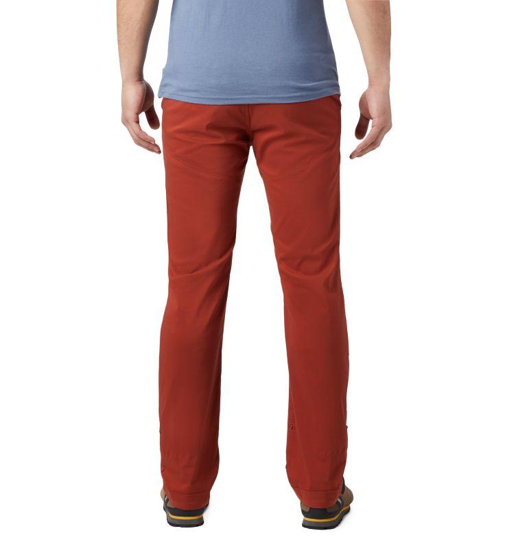 Hardwear AP™ Pant | 801 | 38 Men's Hardwear AP™ Pant, Rusted, back
