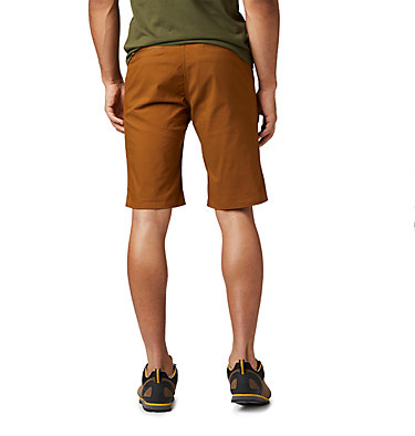 Men's Hardwear AP™ Short Hardwear AP™ Short | 801 | 32, Golden Brown, back