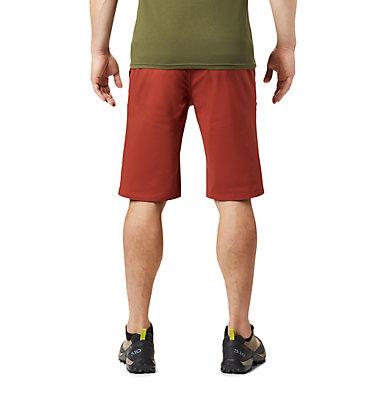Men's Hardwear AP™ Short Hardwear AP™ Short | 801 | 32, Rusted, back