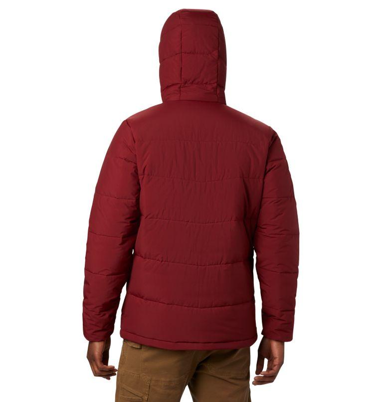 Men's Lone Fir™ 650 TurboDown™ Hooded Jacket Men's Lone Fir™ 650 TurboDown™ Hooded Jacket, back