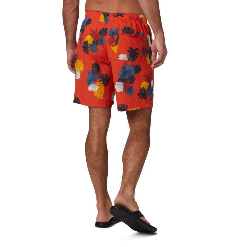Pantaloncini idrorepellenti Big Dippers™ da uomo Pantaloncini idrorepellenti Big Dippers™ da uomo, back