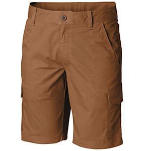 Short cargo Boulder Ridge™ pour homme