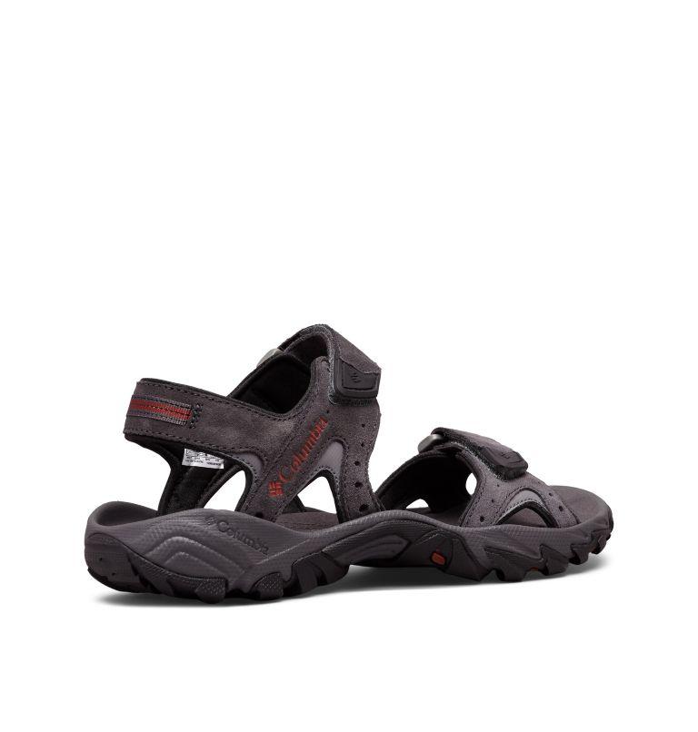 Men's Santiam™ 2 Strap Sandal Men's Santiam™ 2 Strap Sandal, 3/4 back