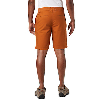 Men's Flex ROC™ Shorts Flex ROC™ Short | 273 | 30, Caramel, back