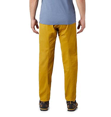 Men's Cederberg™ Pull On Pant Cederberg™ Pull On Pant | 249 | L, Dark Bolt, back