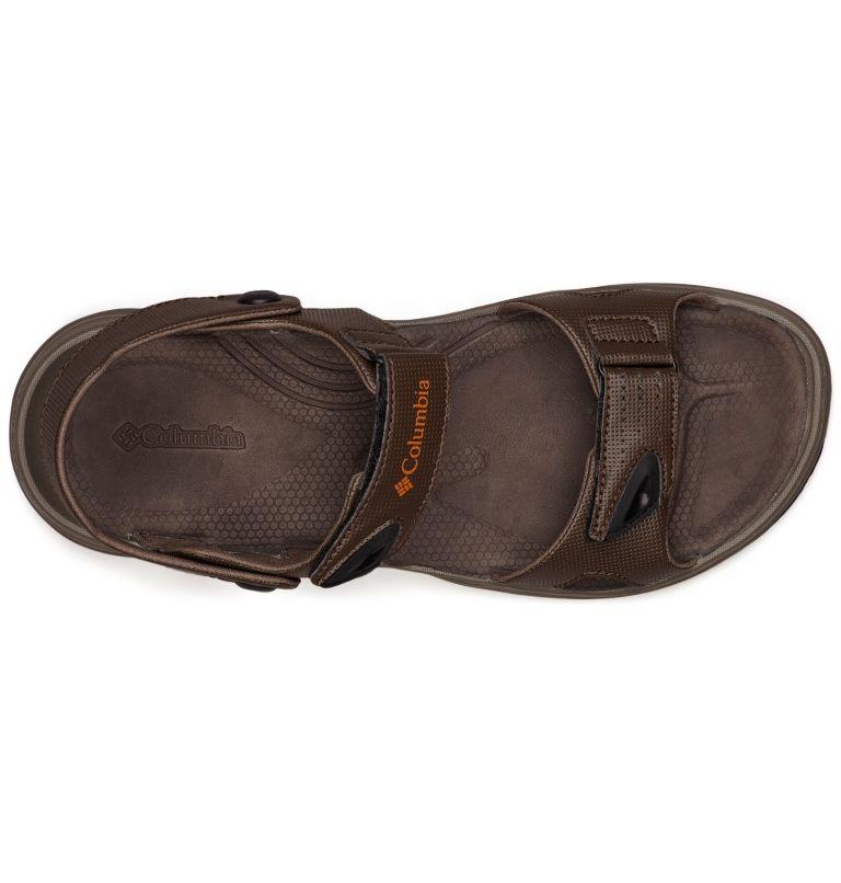 Men's Wayfinder™ 2 Strap Sandal Men's Wayfinder™ 2 Strap Sandal, top