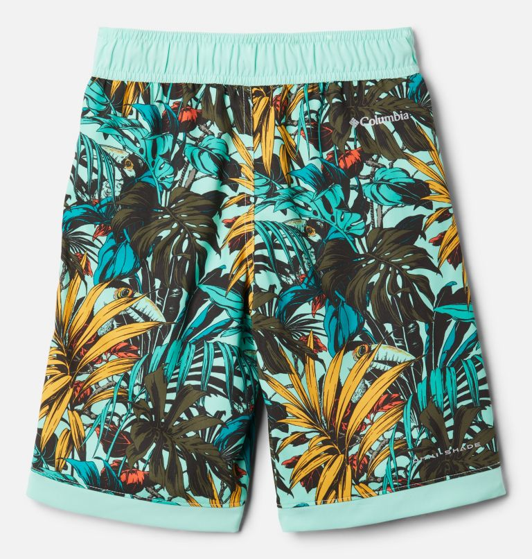 Boys' Sandy Shores™ Board Shorts Boys' Sandy Shores™Board Shorts, back