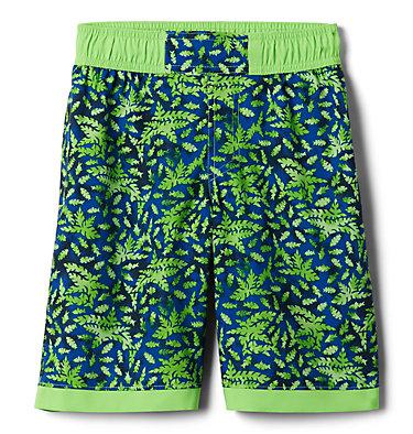 Boys' Sandy Shores™Board Shorts Sandy Shores™Boardshort   378   XL, Green Mamba Leafy Predators, Green Mamba, front