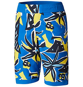 Boys' Toddler Sandy Shores™ Board Short