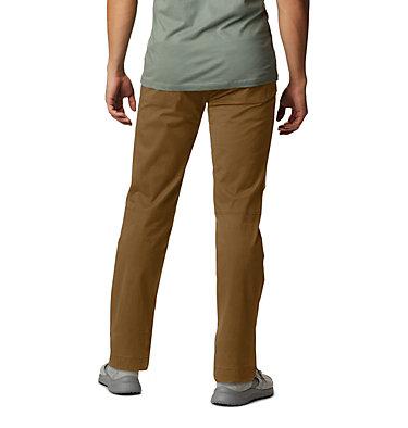 Men's Cederberg™ Pant Cederberg™ Pant | 204 | 28, Golden Brown, back