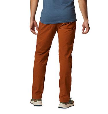 Men's Cederberg™ Pant Cederberg™ Pant | 204 | 28, Rust Earth, back
