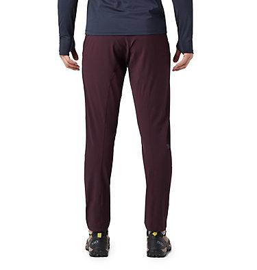 Men's Chockstone™ Pull On Pant Chockstone™ Pull On Pant | 801 | L, Darkest Dawn, back