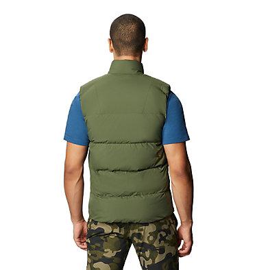 Men's Glacial Storm™ Vest Glacial Storm™ Vest | 010 | L, Dark Army, back