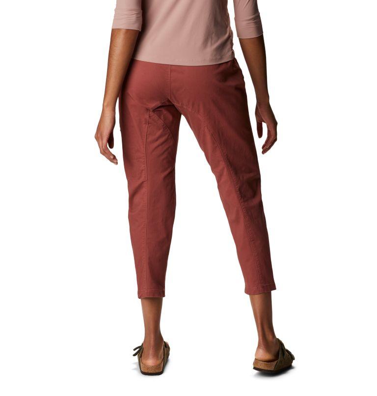 Cederberg™ Pant | 679 | M Women's Cederberg™ Pant, Washed Rock, back