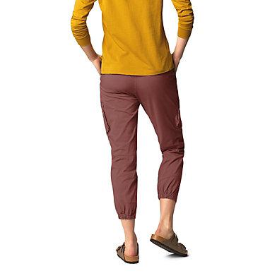 Women's Cascade Pass™ Cargo Pant Cascade Pass™ Cargo Pant | 205 | L, Clay Earth, back