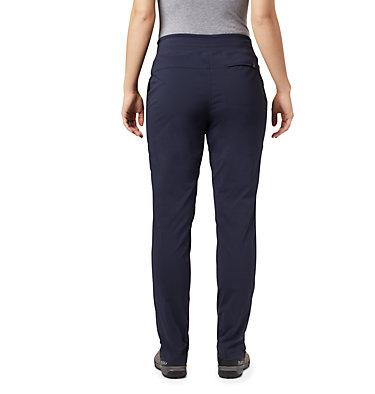 Women's Dynama™ Lined Pant Dynama™ Lined Pant | 253 | L, Dark Zinc, back