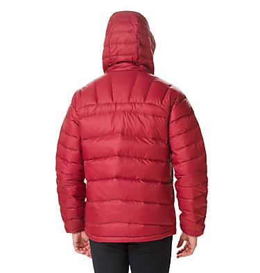 Men's Centennial Creek™ Down Hooded Jacket , back