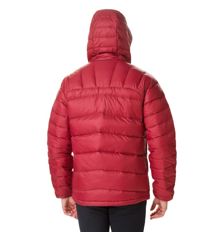 Men's Centennial Creek™ Down Hooded Jacket Men's Centennial Creek™ Down Hooded Jacket, back