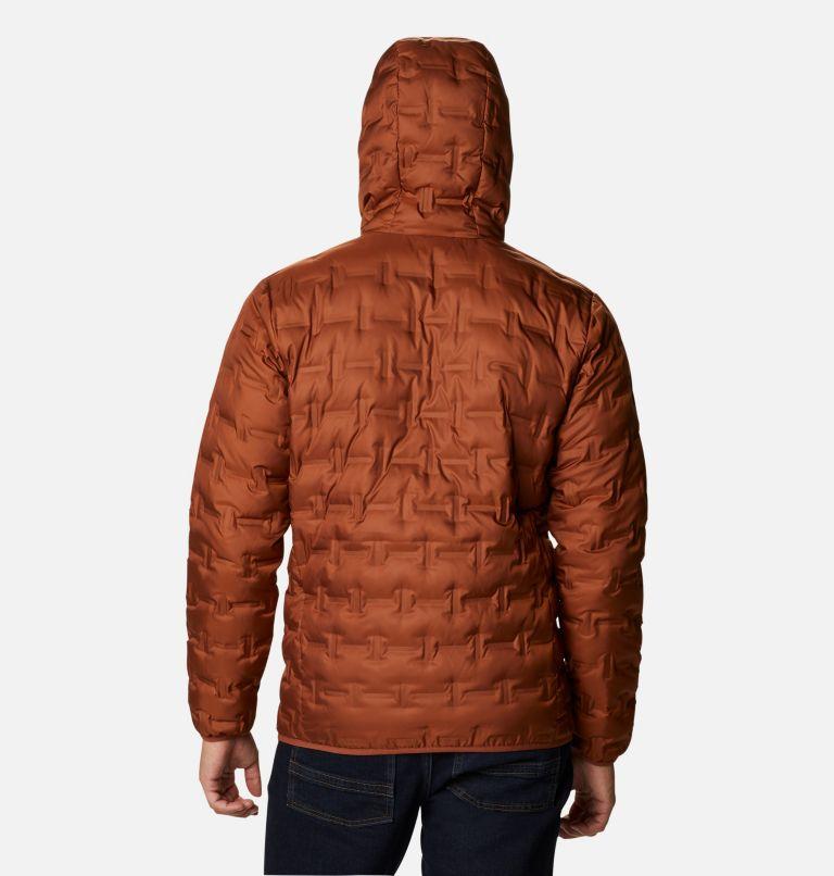 Men's Delta Ridge™ Down Hooded Jacket Men's Delta Ridge™ Down Hooded Jacket, back
