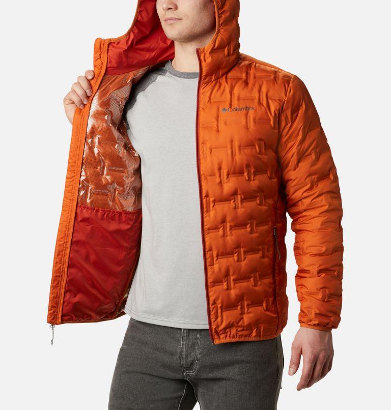 Men's Delta Ridge™ Down Hooded Jacket Men's Delta Ridge™ Down Hooded Jacket, a3