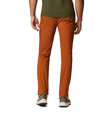Men's AP-5™ Pant AP-5™ Pant | 262 | 28, Rust Earth, back