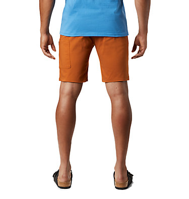 Men's AP-5™ Short AP-5™ Short | 262 | 31, Rust Earth, back