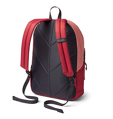 Zigzag™ 22L Backpack Zigzag™ 22L Backpack | 349 | O/S, Cedar Blush, Dusty Crimson, back