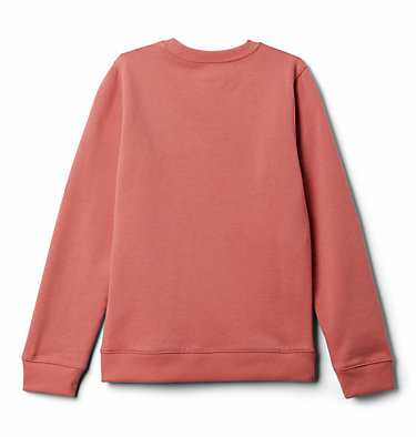 Felpa Columbia Park™ da ragazzo Columbia Park™ French Terry Crew | 466 | L, Dark Coral, back