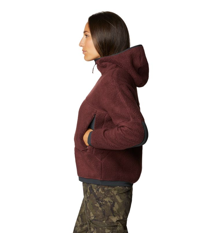 Southpass™ Fleece Hoody | 629 | L Women's Southpass™ Fleece Hoody, Washed Raisin, a1