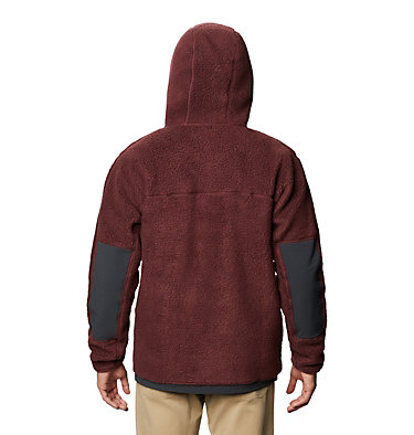 Men's Southpass™ Hoody Southpass™ Hoody | 254 | L, Washed Raisin, back