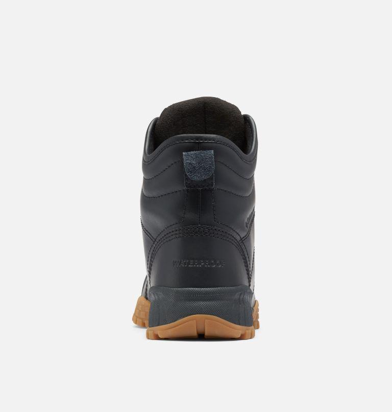 FAIRBANKS™ ROVER | 010 | 13 Men's Fairbanks™ Rover Boot, Black, Cyber Purple, back