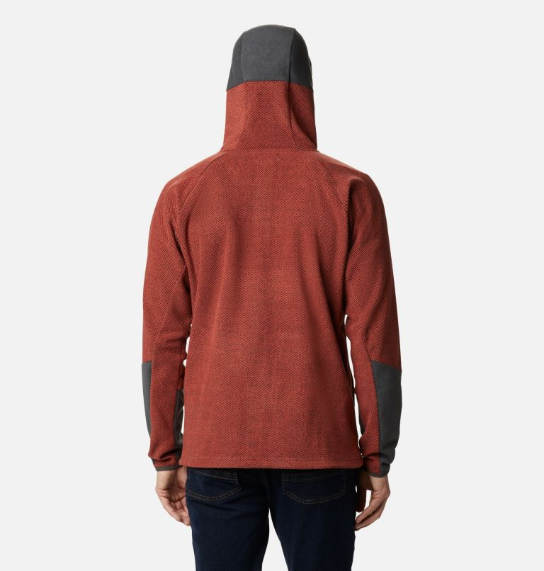 Tough Hiker™ II Hooded Fleece | 844 | M Men's Tough Hiker™ II Hooded Fleece, Flame, Shark, back