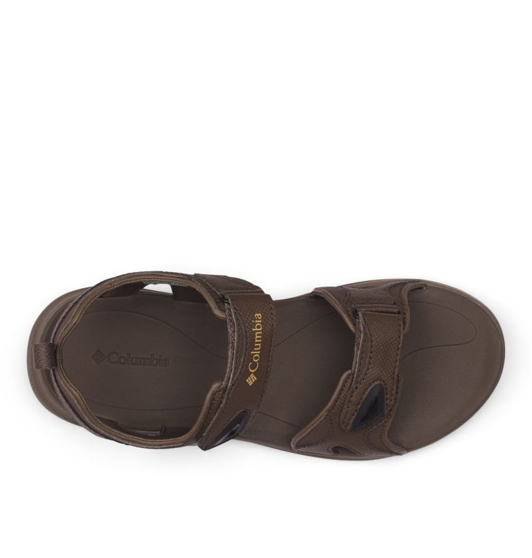 COLUMBIA™ 2 STRAP | 231 | 14 Men's Columbia™ Ankle Strap Sandal, Cordovan, Curry, top