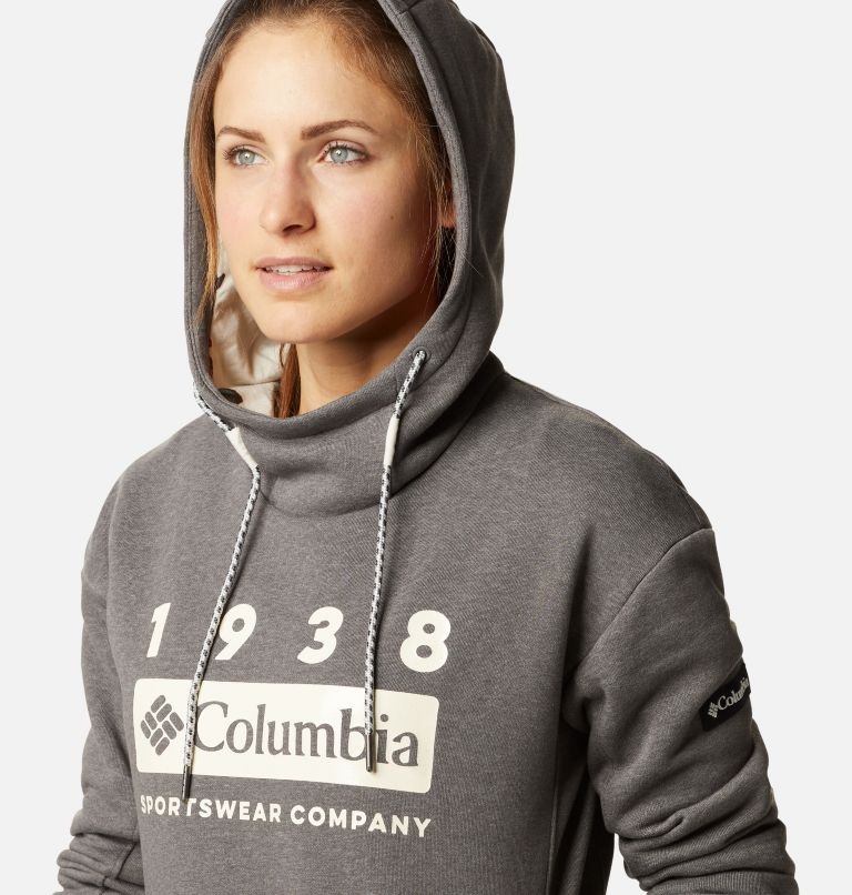 Chandail à capuchon Columbia Lodge™ pour femme Chandail à capuchon Columbia Lodge™ pour femme, a2