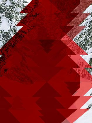 Snowy trees with a red geometric tree pattern overlay.