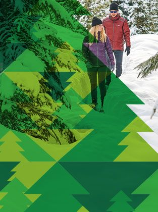 A man and woman walking in the snow. A an abstract green tree pattern.