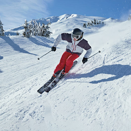 Resort Skiing category