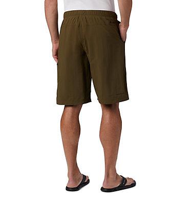 Men's Palmerston Peak™ Water Shorts Palmerston Peak™ Short | 023 | S, New Olive, back