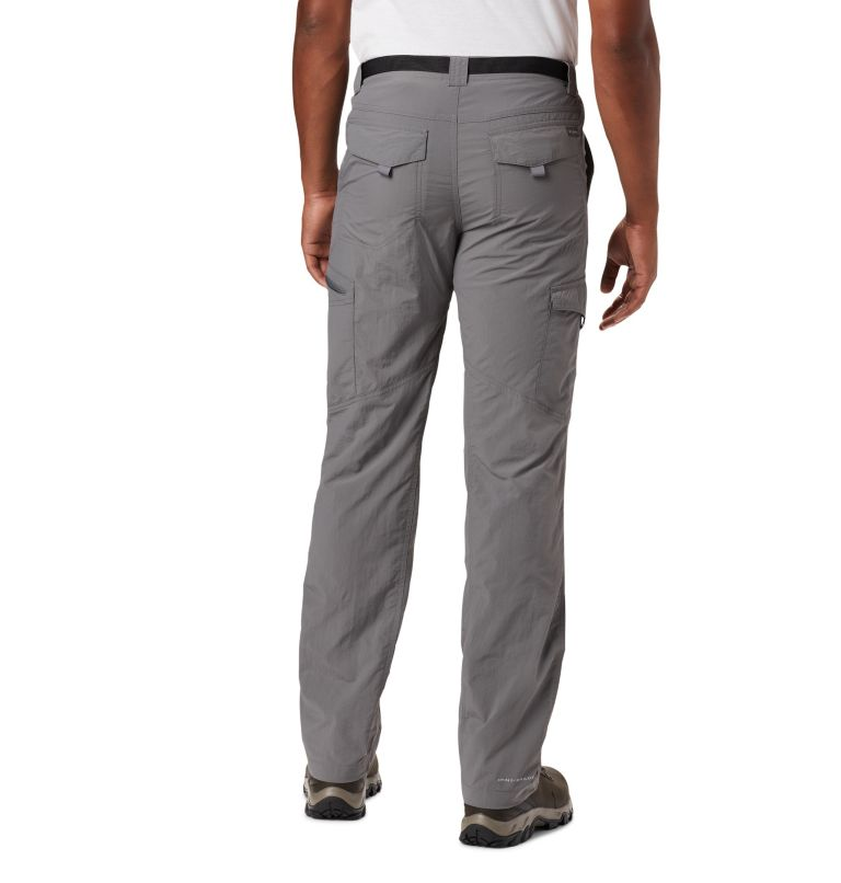Silver Ridge™ Cargo Pant | 023 | 34 Men's Silver Ridge™ Cargo Pants, City Grey, back