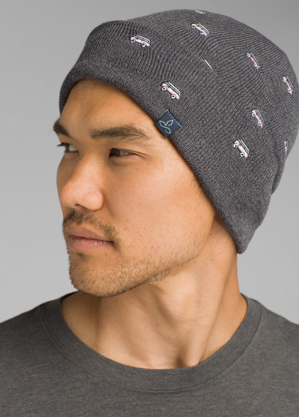 Wild Now Beanie Wild Now Beanie, Grey Blue Van