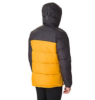 Men's Pike Lake™ Hooded Jacket , back